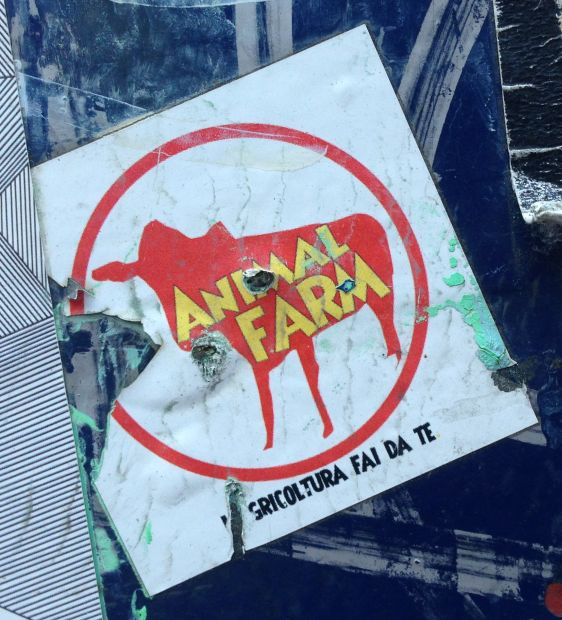 sticker Animal Farm 2014 May Amsterdam center Orwell