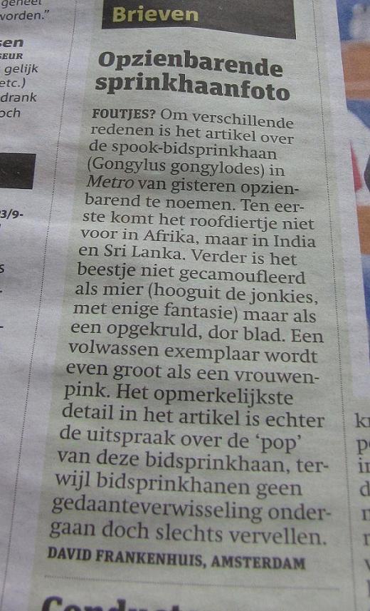 ingezonden brief 'Bidsprinkhaan' Metro, 22 feb. 2011