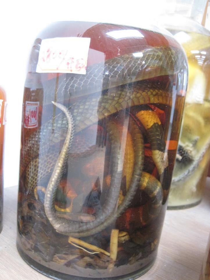 Slangenwijn de lichamen