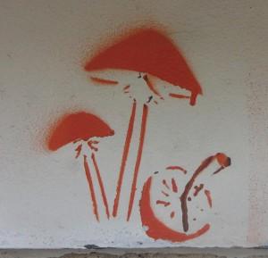 graffiti magic mushrooms Riga paddo's