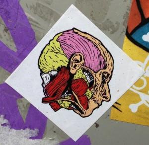sticker open skull Amsterdam 2013 schedel