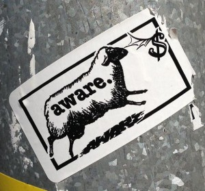 sticker Aware sheep dollar Amsterdam Spui 2013 schaap
