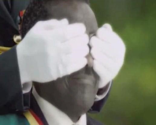 Mugabe Khadafi Nando's Chicken