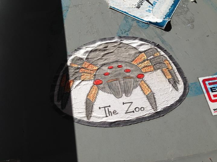 sticker spider the Zoo Amsterdam street art vogelspin