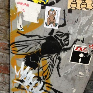 graffiti fly vlieg Amsterdam bug