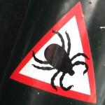 sticker watch out tics Amsterdam De Pijp August 2013 pas op teken