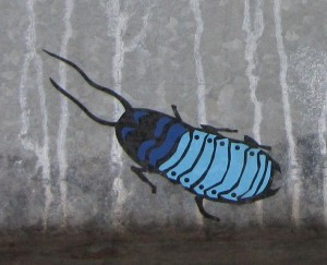 sticker cockroach Riga 2012 kakkerlak