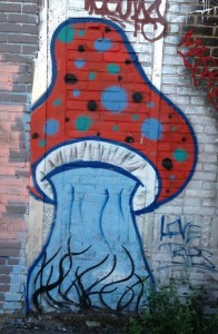 graffiti mushroom Amsterdam North 2013 September paddestoel drugs