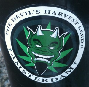 the devil's harvest seeds 2012 Amsterdam Netherlands
