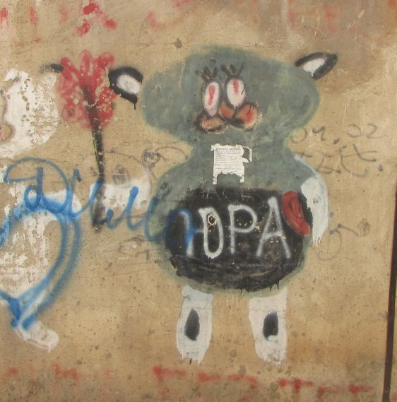 graffiti Tiraspol Transnistria 2014 October cute cat